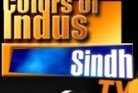 SINDH TV Entertainment